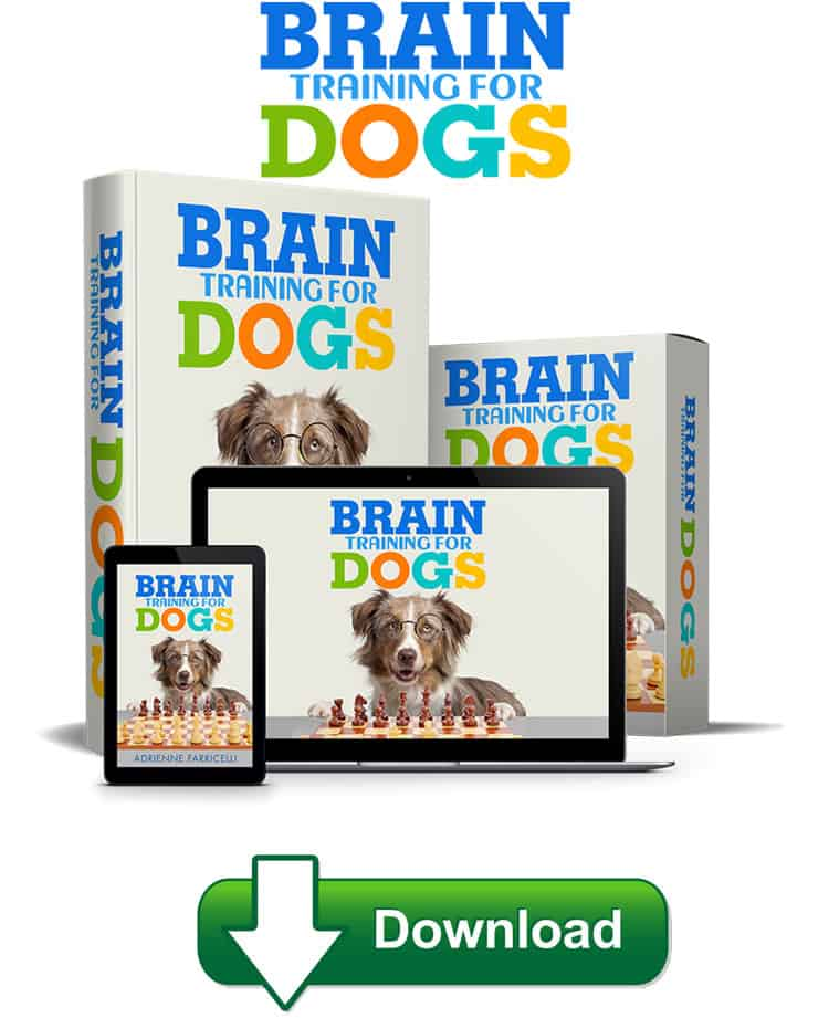 The Brain Training For Dogs course begins with an introduction to force-free training sessions, and all its workouts follow this rule.